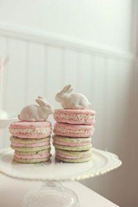 rabbit macarons