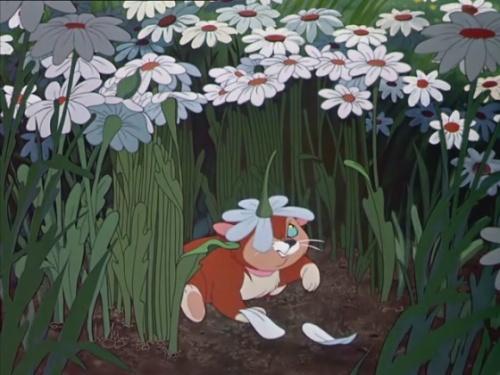 Alice 09